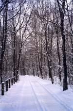 Winter/54037/maarn-1994 Maarn 1994.